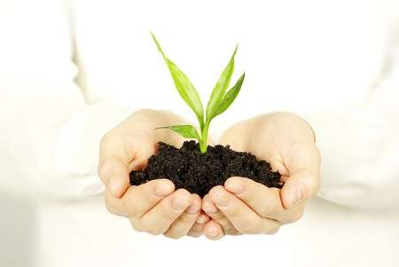 groeien-als-ondernemer-powerinyou