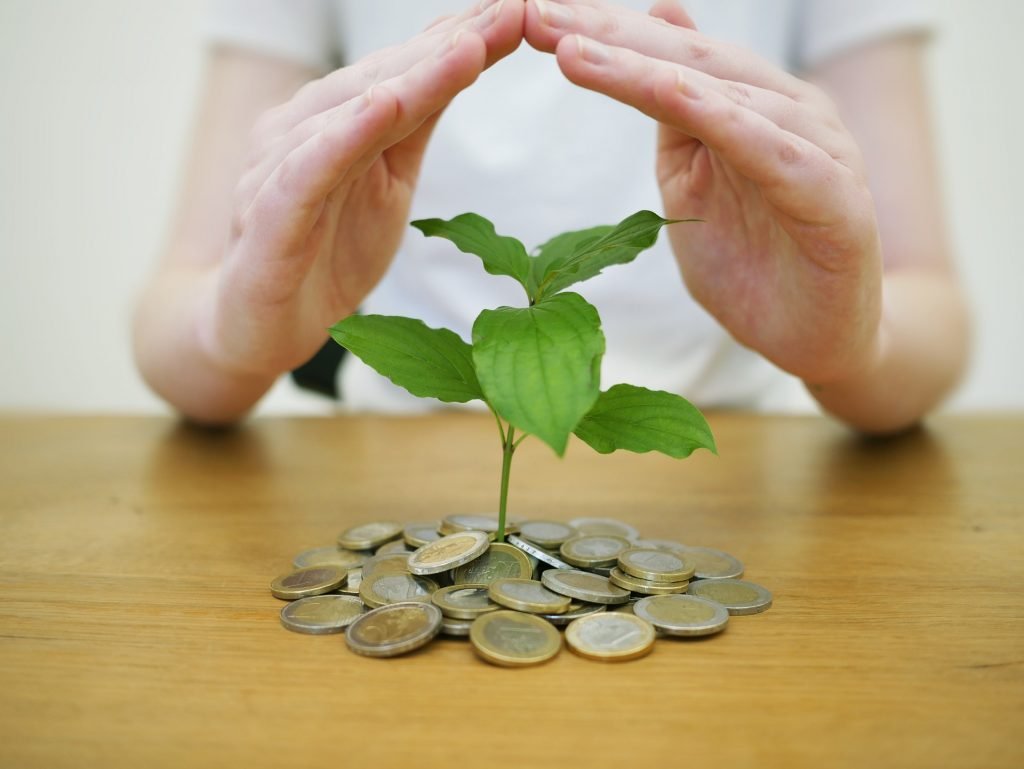 investeren-coaching-groeien-praktijk-wendy-koning